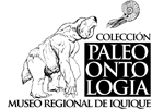 Colección Paleontológica Museo Regional de Iquique